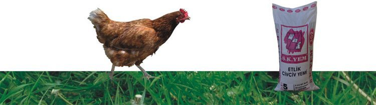 305 Etlik Civciv 2. Dönem Yemi (5 kg.)