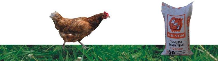 310 Yumurta Tavuk Yemi 1. Dönem