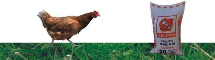311 Yumurta Tavuk Yemi 2. Dönem