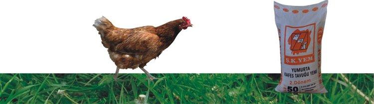 313 Yumurta Kafes Tavuk Yemi 2. Dönem
